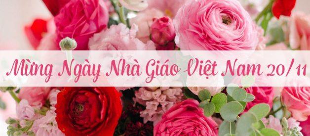 Gửi tặng thầy cô lời chúc ngày Nhà Giáo Việt Nam nhân dịp 20/11 ý nghĩa nhất